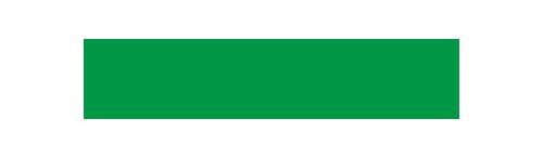 logo_nginx