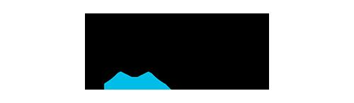 logo_plesk